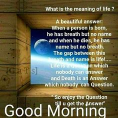 Good Morning have a nice day Happy Morning Quotes, Good Morning Beautiful Quotes, Good Morning Prayer, Good Morning Inspirational Quotes, Morning Greetings Quotes, Morning Blessings, Good Morning Love, Morning Prayers, Good Morning Wishes
