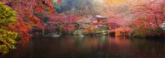 Panorama view of Daigo-ji temple with colorful maple trees in autumn, Kyoto, Japan