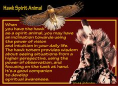 Hawk Spirit Animal  When you have the hawk as a spirit animal, you may have an inclination towards using the power of vision and intuition in your daily life. The hawk totem provides wisdom about seeing situations from a higher perspective, using the power of observation, and focusing on the task at hand. It's a good companion to develop spiritual awareness.