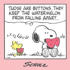 Snoopy and Woodstock Eating Watermelon - Those Are The Buttons - They Keep The Watermelon From Falling Apart