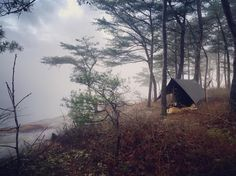 Pitch a tent in paradise.  Photo @atyrius #redrivergorge #rrg #kentucky #explorekentucky #roamkentucky #sharethelex #shoplocalky #sharelouisville #travelky #drivekentucky #myoldkentuckyhome #kyproud by redrivergorgeky