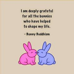 When I say bunnies, I mean my closest friends. ^v^