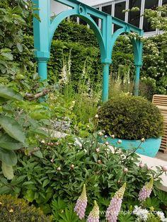 Jon Housley and Years of Covent Garden' - Pumpkin Beth Garden Arbours, Covent Garden, Arches, Entrance, Pumpkin, Outdoor Structures, Landscape, Design, Entryway