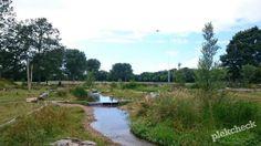 In het Zuiderpark in Den Haag ligt Natuurspeelplaats Zuiderpret. Hier kunnen kinderen met water, zand, modder en losse takken spelen. Zo beleef je de natuur op zijn best.. De natuurspeelplaats ligt aan de rand van de grote speelweide, tussen 2 bosjes. In deze bosjes liggen veel losse takken waarmee boomhutten gemaakt kunnen worden. Tussen de …