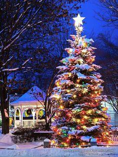 #christmaslightsoutsidehouse