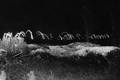 One of the few images taken at night during World War I. According to the existing caption it is taken near the Australian lines. The foreground is brightly lit up, with grass and scrub clearly visible. In the background, against a black sky, shell flares criss-cross the sky. (National Library of Scotland)