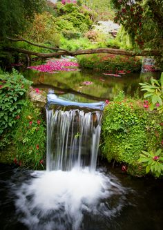 I wished I had this out in my back yard. This is so beautiful and peaceful looking. A mini waterfall in Dartmoor, Devon, UK