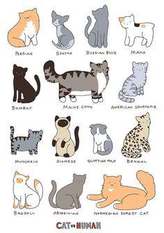 Yasmine Nomnom art... so süß auch eine gute Katze Zeichnung Referenz für das Projekt Laurel Burch 38244