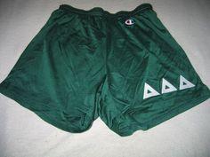 Vintage Champion Mesh Nylon Delta Tri Sorority Shorts XL Green Stretch 27-39 #Champion #Athletic