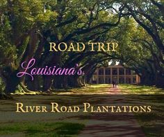 Louisiana's River Road Plantations