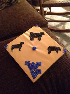 High school graduation cap with cow, sheep, pig silhouettes in black rhinestones, and WV in blue
