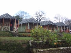 #10. Jungle Livinn at Chail Himachal Pradesh Best time to visit: All round the year Accommodation: Rooms and independent log cabins