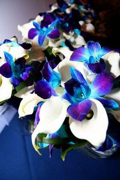 merveilleuse décoration floral bleu avec orchidée | flowers