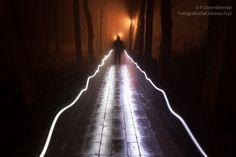 Człowiek we mgle
