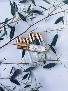 SAFFRON & CEDAR Natural Roll-On Perfume by Wood & Wax, Co.