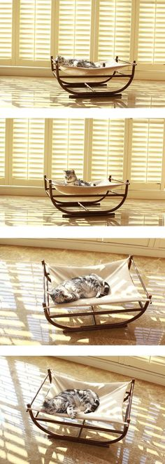 Kitty's Vacation:) Sweet Home Bed Pet's Hammock Cat Furniture Decor!