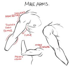 Male arm drawing tutorial