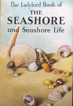 Ladybird series 536 The seashore and seashore life hardback book Listing in the Ladybird,Childrens,Books,Books, Comics & Magazines Category on eBid United Kingdom 1970s Childhood, My Childhood Memories, Vintage Book Covers, Vintage Books, Ladybird Books, Old Toys, The Good Old Days, So Little Time, Childrens Books