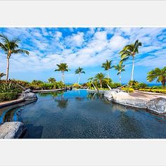 Luxury condo for sale $699k at prestigious gated Halii Kai 2/2 on golf course with ocean views - Six figure rental income - Dip in the pool and have a cocktail at the private Ocean club #love #bluesky #blueocean #warm #sunny #luxuryrealestate #karenferrara #realestate #haliikai #hawaii #hawaiilife #investmentproperty #oceanfront #golf #golfproperty #oceanview #pool #palmtree #whales #vacationrental #vacation photo cred by commission @ethantweedie #ethantweedie