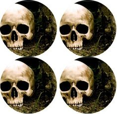 Skull Rubber Round Coaster set (4 pack) Great Gift Idea >>> Find out more details by clicking the image : Kitchen Utensils and Gadgets