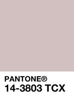 Bicarbonato palette