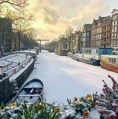 Amsterdam. Begin Maart 2018. Amsterdam Pictures, Destinations, Winter Magic, Amsterdam Travel, Snow Scenes, Winter Beauty, Beautiful Places In The World, Winter Landscape, Adventure Awaits