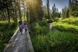 Saskatchewan Parks: provincial parks, National parks, regional parks, camping, golfing and trails. Reserve your spot today.