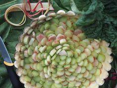 Raparperipiirakka x 4 - Himahella Honeydew, Chutney, Death, Fruit, Cake, Food, Kuchen, Essen, Meals