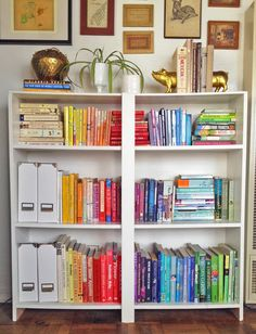 organizing bookshelves by color // kinda pretty great