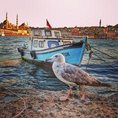 İstanbulBy olcaytar