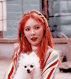 Read kim nᥲmjoon from the story icons + packs. ➳ kpop by nexfeel (🖇️┆❀ ̖́-) with reads. Woozi, K Pop, Baekhyun, Hyuna Kim, Glossy Eyes, Kpop Hair, E Dawn, Triple H, Aesthetic Indie
