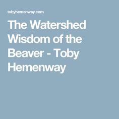 The Watershed Wisdom of the Beaver - Toby Hemenway