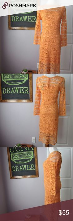 HUGE SALE Lace Long Sleeved Candace Dress Check out my closet wide sale!  New with tags!  No flaws evident.  Cotton Lace Shell.  Poly lining.  High neckline. Bust 16.5 inches. Length 41.5 inches.  Bundle for best deals! Hundreds of items available for discounted bundles! You can get lots of items for a low price and one shipping fee!  Follow on IG: @the.junk.drawer Cremieux Dresses Long Sleeve