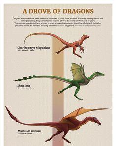 Prehistoric Dinosaurs, Prehistoric Creatures, Creature Concept Art, Creature Design, Fantasy Creatures, Mythical Creatures, Dinosaur Illustration, Extinct Animals, Dinosaur Art