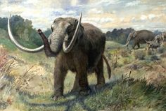 Demise Of Larger Prehistoric Animals Blamed On Climate Change, Humankind - Science News - redOrbit