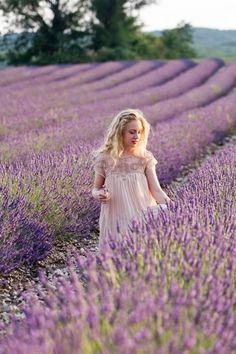 Provence, Lavender fields                                                                                                                                                                                 Mais
