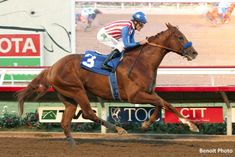 Dortmund Dominates Native Diver At Del Mar - Horse Racing News | Paulick Report