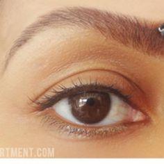 Eye Brow 101