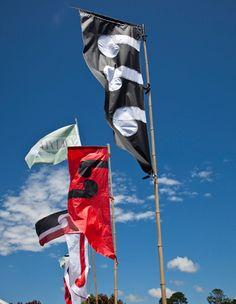 parihaka festival Catch Em All, Art Boards, New Zealand, Kiwi, Flags, Banners, Pride, Maori, Banner