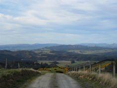 dunedin Kiwiana, Study Abroad, Studying, New Zealand, Country Roads, Mountains, Nature, Travel, Life