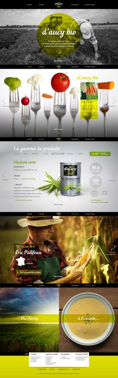 Conception et Direction artisique # Site daucybio.fr by Anthony Lepinay, via Behance