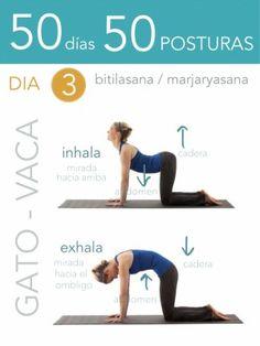 ૐ YOGA ૐ ૐ Bitilasana ૐ ૐ Marjaryasana ૐ 50 días 50 posturas. Iyengar Yoga, Ashtanga Yoga, Kundalini Yoga, Yoga Fitness, Workout Fitness, Postural, Yoga 1, Yoga Mantras, Yoga Quotes