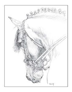 Horse Card  Beautiful Ramiro folded notecard by gigglesnortsociety, $20.00 This card is so meaningful to me I get tears just seeing it, my dear friend created this drawing because of my late horse Ramiro...he was a magnificent creature and she really captured him here...what talent she has.  Love you Sandy.