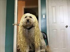 She is Rapunzel