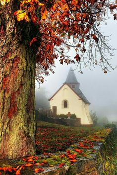 quenalbertini: Country church in autumn Old Country Churches, Old Churches, Beautiful World, Beautiful Places, Beautiful Pictures, Autumn Scenes, Autumn Aesthetic, Fall Pictures, Chapelle
