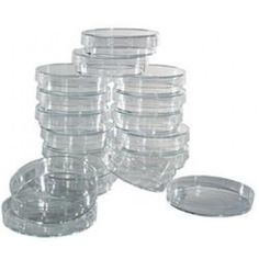 Petri Dish - 51 mm (2 in) - 20 pack $7.99 Use for Invitations?