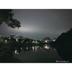 Instagram【tomotaka_h】さんの写真をピンしています。 《皆様おはようございます。 二度寝して、起きたら良い天気! 完全に出遅れましたね〜っ(o^^o) #写真好きな人と繋がりたい#写真好キナ人ト繋ガリタイ  #東京写真倶楽部#igersjp #写真好き#スナップ #風景 #何気ない景色#街撮#おっさん写真部 #お写歩#写真撮ってる人と繋がりたい #カメラ#東京カメラ部 #flowers #フラワー  #igersjp#flower#macrophotography #macro #flowerslovers #macrophoto #はなまっぷ #花おっさん #花#写真#iphone6 #皇居#祝田橋#夜景》