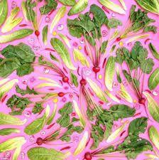 Resultado de imagen para geometric fruit