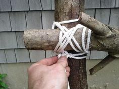 How to make a rustic pumpkin trellis on a shoestring budget!
