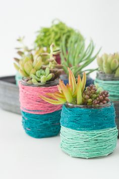 DIY Block-Color Wrapped Jar Pots for Succulents | Design Mom #diy #craft #greenery